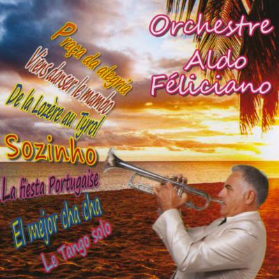 pochette_album_aldo_feliciano_2018